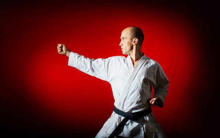 Martial artist in fighting stance